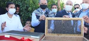 Akdeniz meyve sineğine karşı kısır böcek salımı Kısır böcek salımını Bakan Pakdemirli yaptı