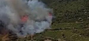 Burdur Bucak'ta orman yangını Dağlık alanda çıkan yangına havadan karadan müdahale ediliyor