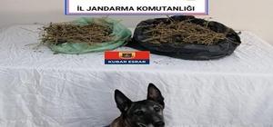 Jandarma 23 kilo esrar ele geçirdi