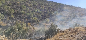 Gercüş'te çıkan yangında 250 dönümlük alan hasar gördü