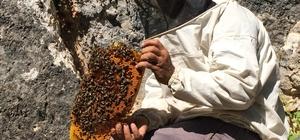 """Doğal bal için günlerce """"firari"""" arıların izini sürüyorlar Kilosu bin 500 lira olan doğal balı bulmak için sabah erken saatlerde evlerinden çıkan vatandaşlar, arıların izin sürerek günlerce doğal kovanları arıyorlar"""