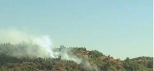 Serik'te orman yangını büyümeden söndürüldü